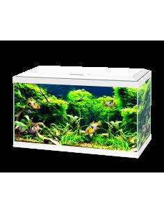 V. Laga Orlux Insect Patee Premium